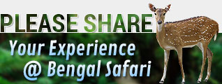 Feedback at Bengal Safari