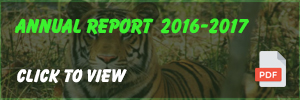 Annual Report - 2017 click to view or download